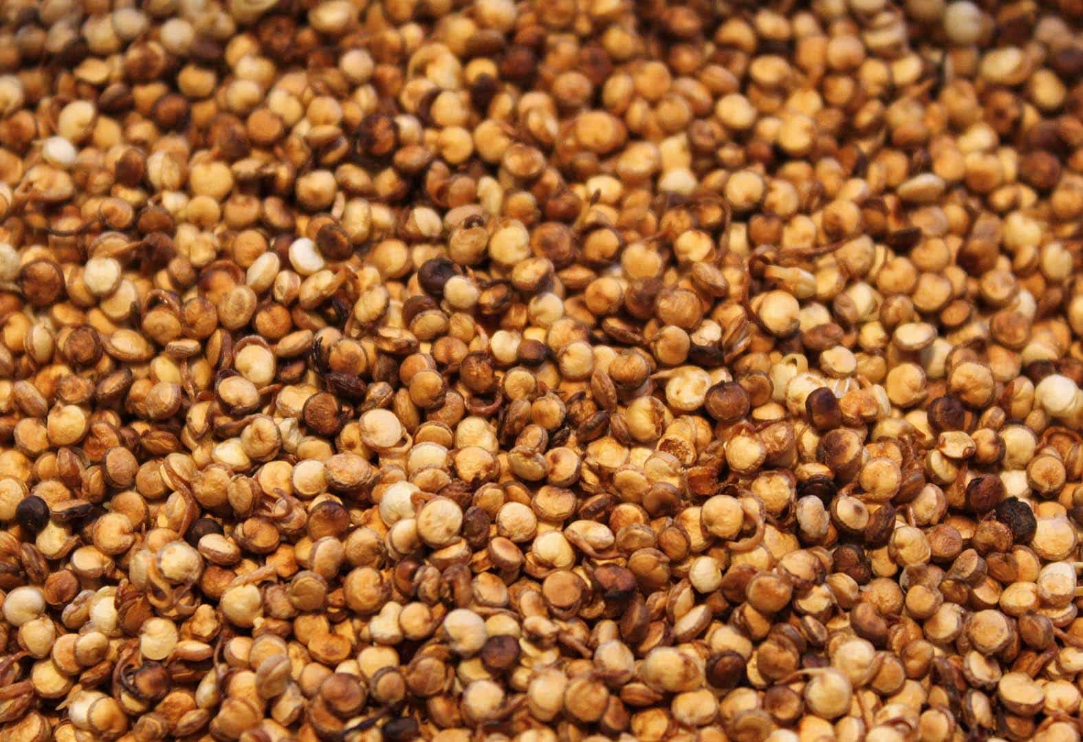 The Many Faces of Cooking Quinoa