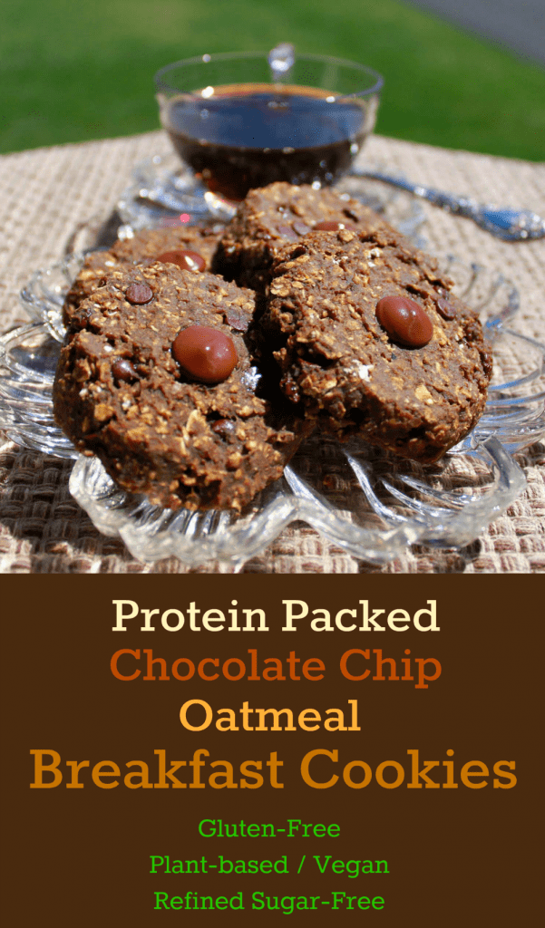 Chocolate Chip Oatmeal Breakfast Cookies (Gluten-Free ...