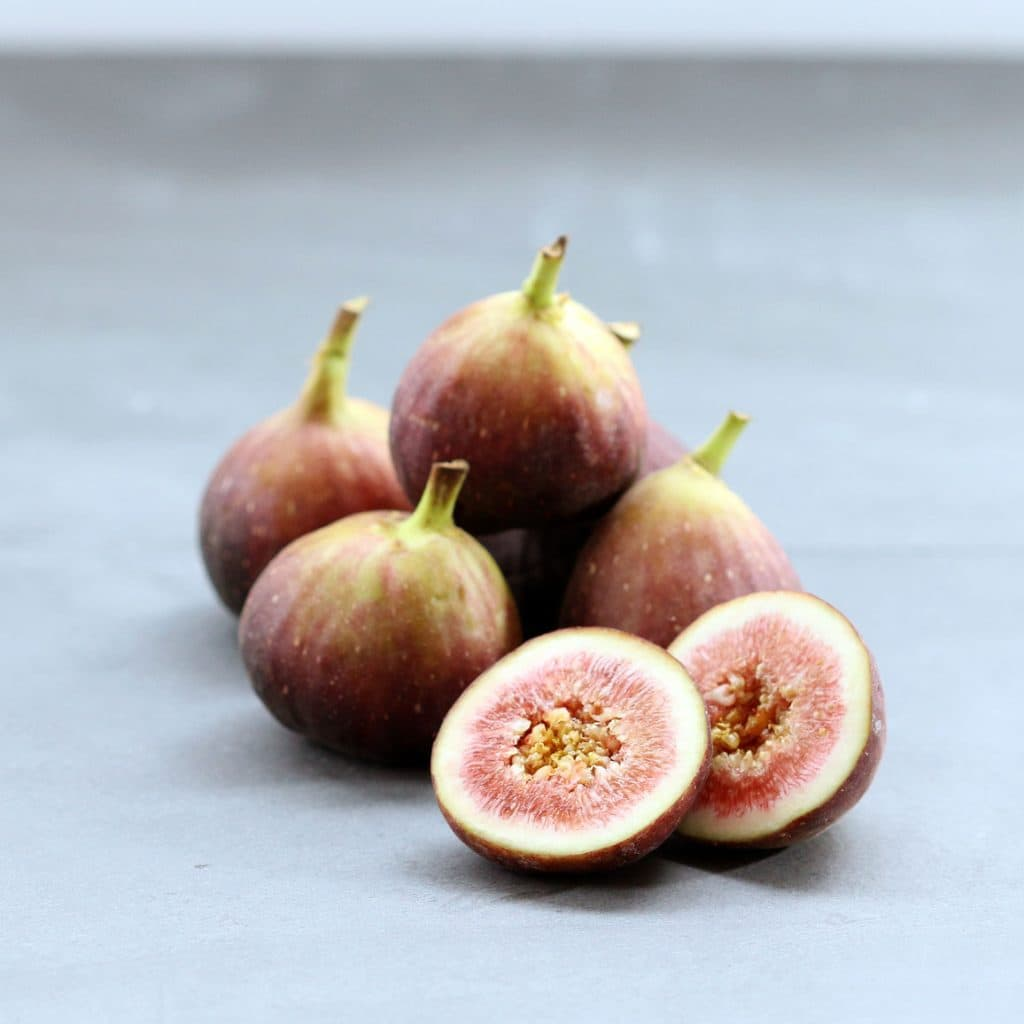 Figgy Panini Delight - Fresh Figs