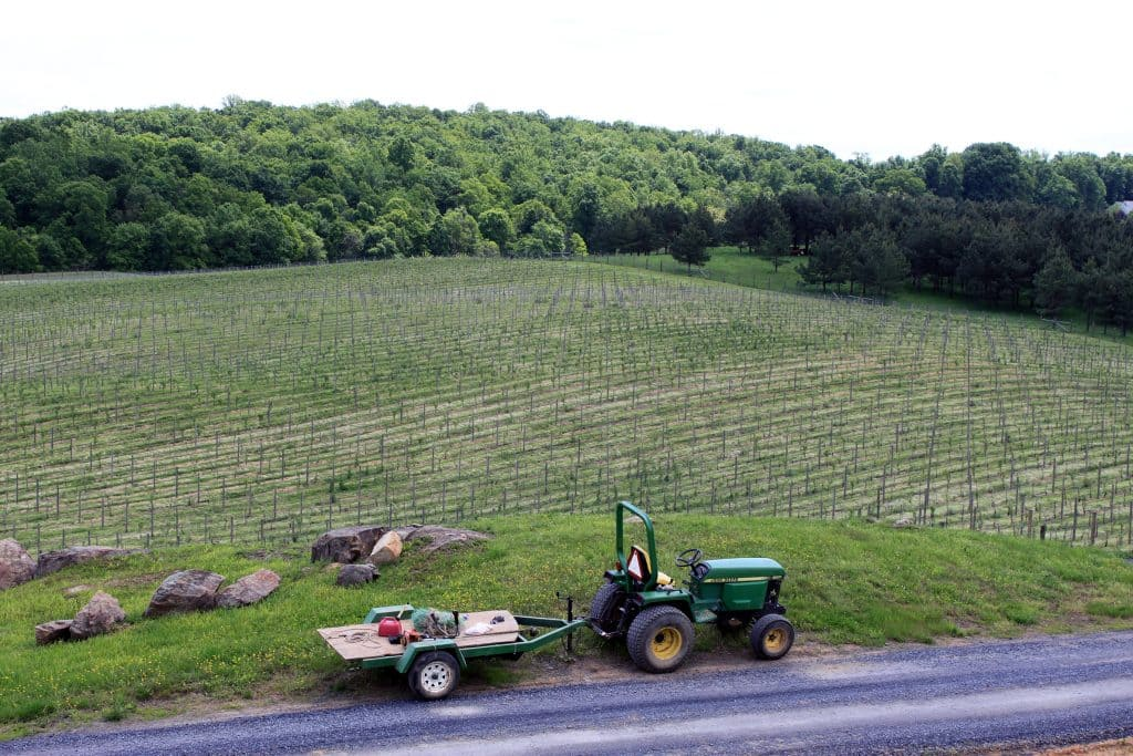 Blue Valley Winery - Tractor and Early Vines