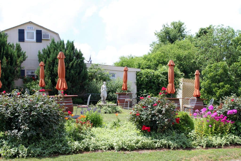 Three Fox Vineyards - Garden