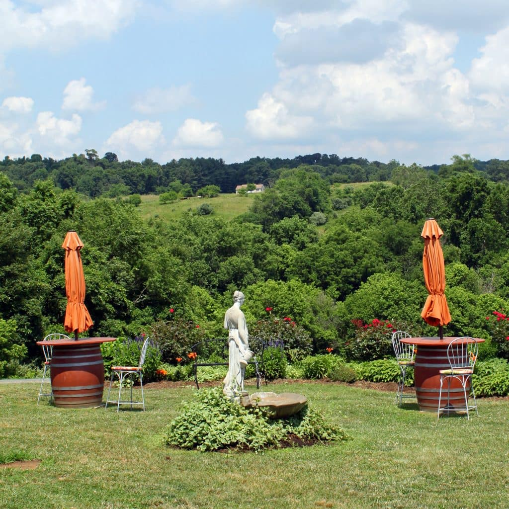 Three Fox Vineyards - Outdoor Seating