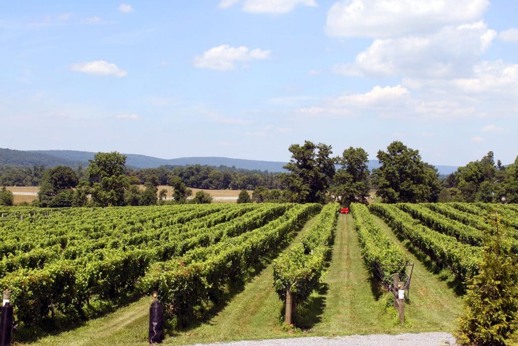 Breaux Winery : Breaux vineyards taste & tour nutritionicity