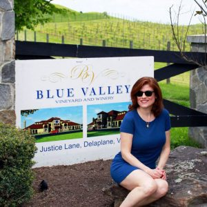 Blue Valley Vineyard and Winery (Delaplane, Virginia)