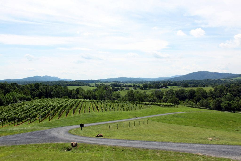 Delaplane Cellars - Vista from Deck