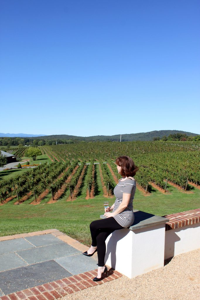 Barboursville Vineyards - Overlooking Cabernet Franc Vines