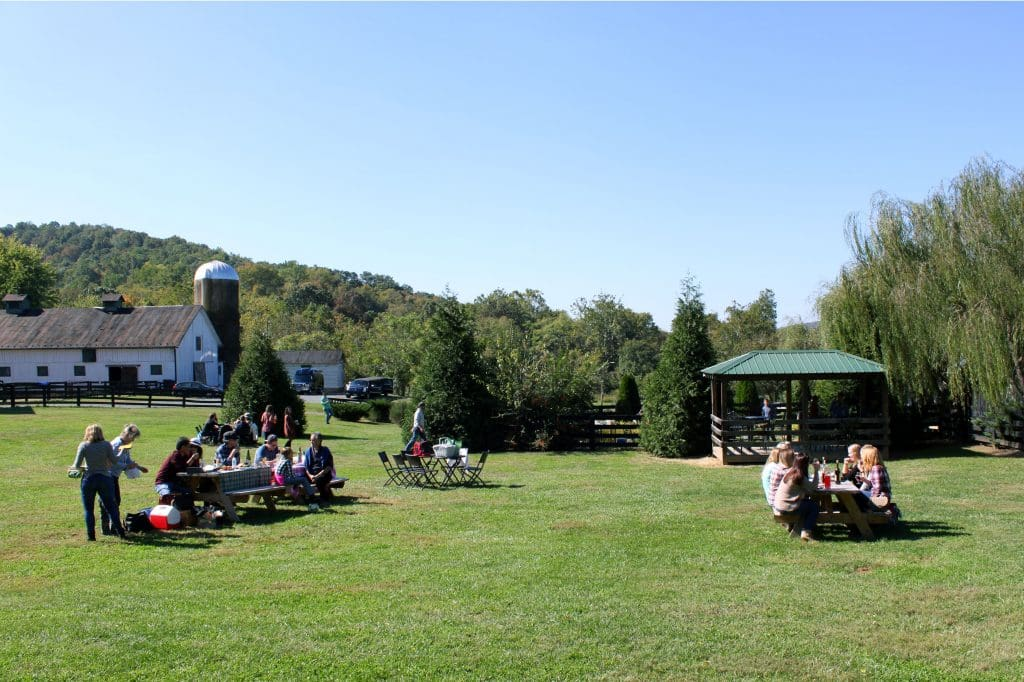 Aspen Dale Winery at the Barn - Picnic Area