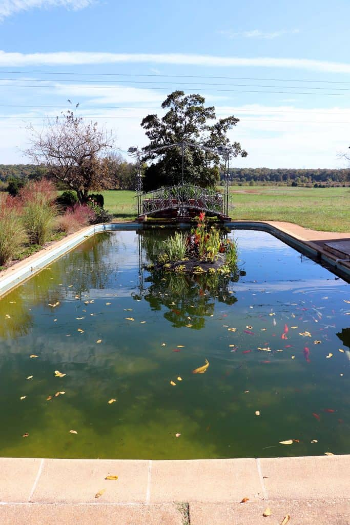 Effingham Manor Winery - Historic Pool