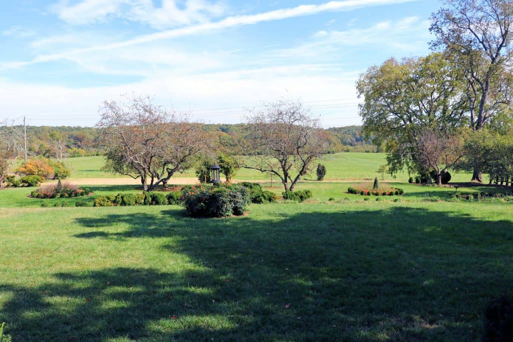 Effingham Manor Winery - View from Back Porch